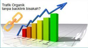 memperbanyak visitor website tanpa backlink